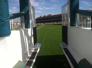 This is one of my favorite pictures I have. It's from the starting gate. Baber took me down to the turf right before one of the races during the 2012 meet. For him it was nothing, because he spent nearly four decades in that spot, but for me it was a real treat to standing between those gates.